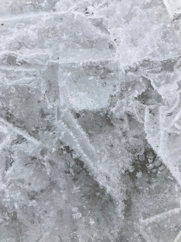 Close-up of the ice